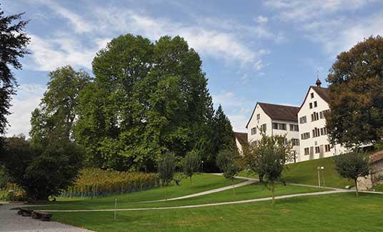Park mit Weinreben und Kantonsschule